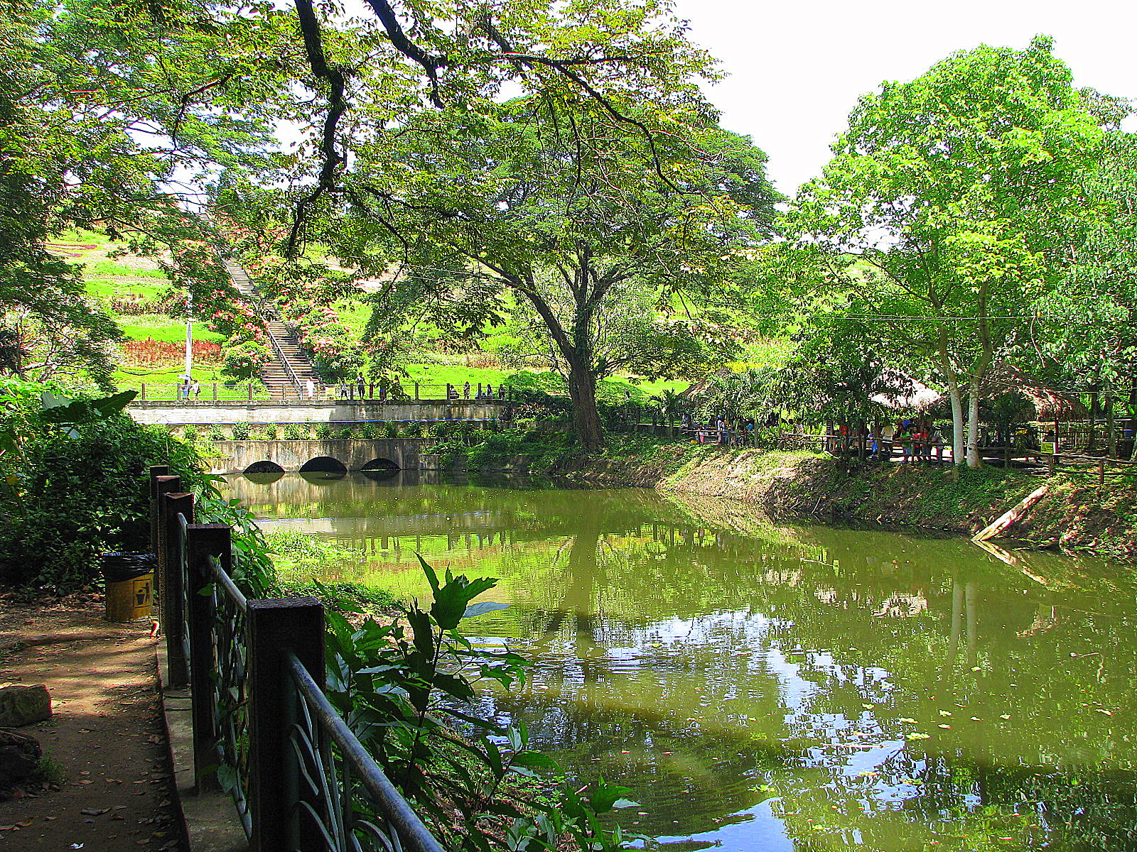 14 practical valentine s date ideas in manila the blog - La mesa eco park swimming pool photos ...
